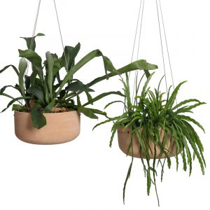 GL Terracotta Hanging Pot