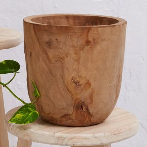 Iniko Tree Root Planter